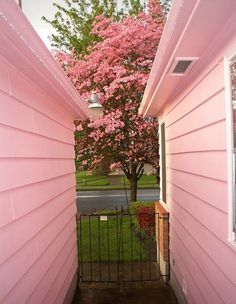 pink everywhere. My grandma and grandpa had a little pink house, next to it they had a matching storage shed. This picture reminds me of that. Pink Love, Pretty In Pink, Pink And Green, Hot Pink, Perfect Pink, I Believe In Pink, Pink Houses, Everything Pink, Pink Aesthetic