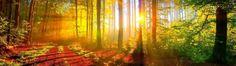 Szokujące konsekwencje niedoborów witaminy D. Sprawdź, czy jesteś w grupie ryzyka! | Ciekawe i niesamowite: zdrowie, wiedza, duchowość, psychologia, polityka i gospodarka