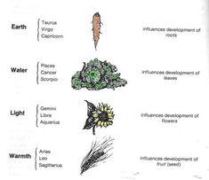 Lunar & Solar Rhythms in Biodynamic Agriculture Biodynamic Gardening, Permaculture Farming, Classical Elements, Plant Diseases, Worm Farm, Market Garden, Plant Science, Moon Garden, Permaculture