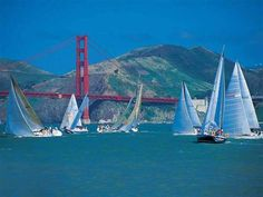 San Francisco: Love
