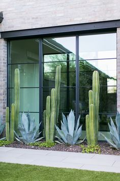 Black windows Black Windows Sierra Pacific Black windows with simple horizontal … – Exterior Farmhouse Landscaping, Modern Landscaping, Front Yard Landscaping, Desert Landscaping Backyard, Modern Landscape Design, Landscaping Software, Landscaping Design, Xeriscaping, Garden Inspiration