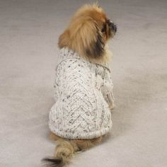 Knit a warm and cozy coat for your dog with one of these 7 free knitting patterns!