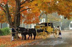 Yellow carriage in Fall at Colonial Williamsburg.  Photo by David M. Doody