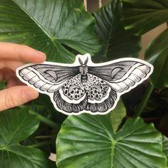 """night moth tattoo 3.5"""" Black Line Tattoo, Line Tattoos, Black And Grey Tattoos, Arm Tattoos, Sleeve Tattoos, Tattoos For Guys, Bug Tattoo, Insect Tattoo, Knee Tattoo"""