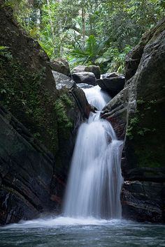 Go with the flow … Waterfall, El Yunque