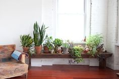 Green decoration: The taste of Petrol and Porcelain   Interior design, Vintage Sets and Unique Pieces www.petrolandporcelain.com.