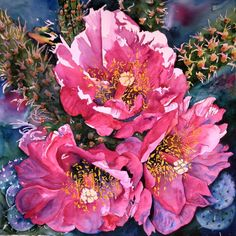 "Desert Full Bloom - 22x22"" Watercolor Flowers, Watercolor Paintings, Original Paintings, Watercolors, Watercolor Ideas, Caribbean Art, Boat Painting, Photo Work, Cactus Art"