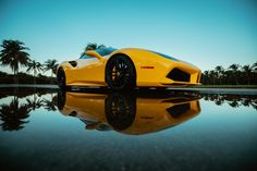 Ferrari 488 with cool reflection in Key Biscayne