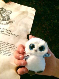 Harry Potter birthday present idea for 11 year olds. #owl #letter #hogwarts #hedwig #craft #diy #theme #idea  www.livelikeanutter.com
