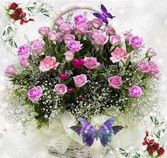 V2.gif (480 × 456) Beautiful Bouquet Of Flowers, Pretty Roses, Amazing Flowers, Beautiful Flowers, Butterfly Flowers, Flower Art, Butterflies, Seed Packaging, Flower Images