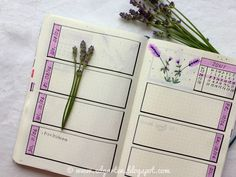 Edgarten - Gartenblog: 📘  Bullet Journal - Juni mit Lavendel - Tag 78 Bullet Journal, Juni, Journal Ideas, Planners, Homeschooling, Journals, Notebook, Small Notebook, Day Planner Organization