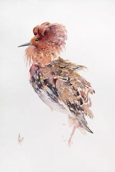 Watercolor Paper, Pet Birds, Portrait, Watercolors, Size 14, Artwork, Animals, Image, Style