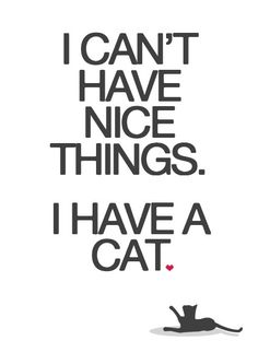 HA HA TRUE! | I Can't Have Nice Things I Have A Cat Poster Print | by ohdearmolly @Etsy