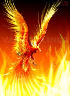 fox on fire tattoo | Картинки Феникса