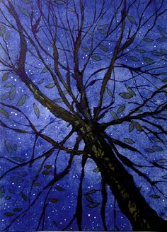 Starry Sky, Sweet Chestnut. Ink and watercolour.