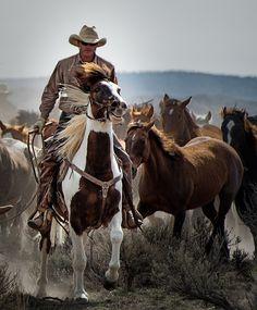 by John Bielick #horses #cowboy #equestrian