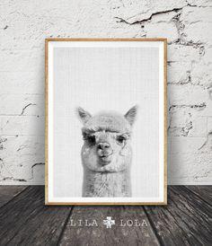 Grafik, Kinderzimmer Dekoration, Alpaka Alpaka Wand Kunst, moderne minimalistische abstrakte schwarz-weiß Animal Print, druckbare Kunst, Kindergarten Print, grau