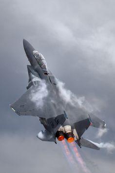 F-15E Strike Eagle                                                                                                                                                                                 もっと見る