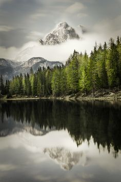 Idyllic view of the forest and a mountain lake. - Green trees growing in a forest near a mountain lake. Mountain peak in the background reflecting on the surface of the lake. Lake Tattoo, Forest Tattoos, Forest View, Natural Background, Green Lake, Growing Tree, Green Trees, Lake View, Amazing Photography