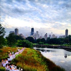 Le Diner En Blanc, Lincoln Park Zoo Nature Boardwalk. Elegant Picnic Dinner with 1200 friends in white. Photo by Nikki Arndt iconicpicsnikki.com