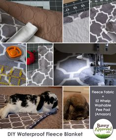 A little sewing project: DIY Waterproof Fleece Blanket for Rabbits! Rabbit Run, House Rabbit, Pet Rabbit, Angora Rabbit, Bunny Cages, Rabbit Cages, All About Rabbits, Class Pet, Pekinese