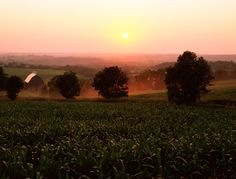 A view of the Mississippi River Valley in Southeastern Minnesota.