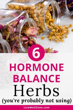 Vitex, black cohosh and dandelion are just a few of the herbs that balance hormones naturally. You can easily add them to your hormone balance diet or take them as one convenient hormone balancing supplement. Learn how they can help ease hormonal imbalance symptoms. Natural Sleep Remedies, Cold Home Remedies, Cough Remedies, Natural Cures, Herbal Remedies, Health Remedies, Natural Health, Natural Foods, Natural Life