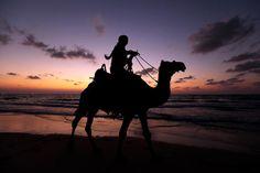 A Palestinian rides a camel on the beach in Gaza City, Sept. Beach Walk, Beach Bum, Social Trends, Palestine, Beautiful World, Camel, Monitor, Photo Galleries, Christian
