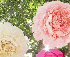 DIY: Giant Paper Flowers