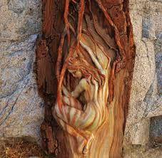 Резултат слика за wooden roots art
