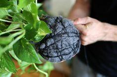 string gardens | Featured Designer: Pop Plant | Featured Designers | Pinterest
