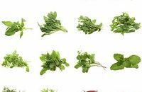 Antynowotworowe właściwości ziół: kurkumy, imbiru, szczypiorku, rozmarynu