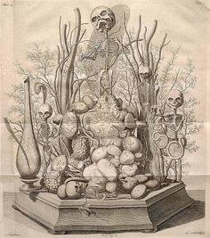 Frederic Ruysch (1638-1731) was a Dutch botanist and anatomist, remembered mainly for his groundbreaking methods of anatomical preservation and the creation of his carefully arranged scenes incorporating human body parts.