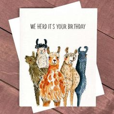 Funny Alpaca Birthday Card For Friends, Llama Birthday Card Funny, Happy Birthday Card From Friends Coworker Boyfriend Birthday Party Animal - Geburtstag Happy Birthday Coworker, Happy Birthday Boyfriend, Happy Birthday Best Friend, Birthday Cards For Friends, Happy Birthday Funny, Funny Birthday Cards, Funny Happy, Grandma Birthday, Birthday Quotes