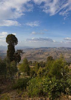 Landscape in Ethiopia near Harar by Eric Lafforgue, via Flickr