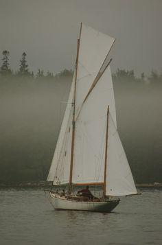 wooden boat regatta