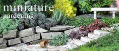 Miniature Gardening - the Newest Trend in Gardening