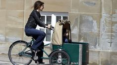 Prinsesse Marie on the very popular Danish bike with her son as a passenger | Billed Bladet