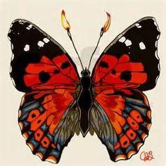 Kamehameha Butterfly. Micro. Michael Chrichton.