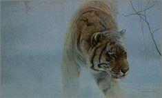 ROBERT BATEMAN Paintings | Robert Bateman - Twilight - Siberian Tiger