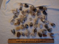 Large Lot Polished Rocks Agates Over 1.5 Pounds (Lot #2)