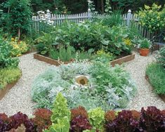 herb garden, vegetable garden, kitchen garden