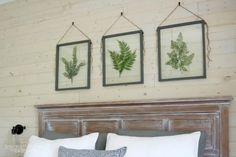 Build a DIY pressed plant frame using faux greenery and off-the-shelf glass for a gorgeous wall art display that will fit any style, farmhouse to modern. Leaf Wall Art, Glass Wall Art, Diy Wall Art, Diy Art, Framed Wall Art, Pressed Flowers Frame, Pressed Flower Art, Pressed Leaves, Plant Wall