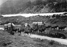 "Three ""Sixes"" on Lytton Lillooet [Wagon] Road General material designation   [ca. 1908]   silver gelatin print on postcard ; 9 x 13 cm  Matthews, James Skitt, Major (1878-1970)  Photograph shows three horse-drawn chuckwagons on the Lytton Lillooet Road on the Tuckozap Indian Reserve 24."