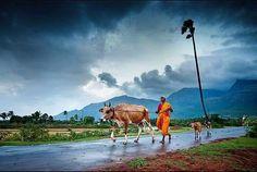 Rural Tamil Nadu , India.