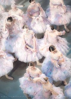 Ballerina Clipart: The Lightness and the Royal Beauty of Ballet Dancers in The Collection of Paintings and Illustrations of Ballerinas. Ballet Art, Ballet Dancers, Grands Ballets Canadiens, Pretty Ballerinas, Photo D Art, Ballet Photography, Tiny Dancer, Ballet Beautiful, Ballet Costumes