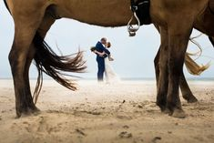 Wedding photography collection As a journalistic wedding photographer I make beautiful wedding pictures like a powerful life story. Wedding Picture Poses, Wedding Poses, Wedding Pictures, Cowgirl Wedding, Horse Wedding, Horse Photos, Horse Pictures, Horse Photography, Wedding Photography