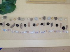 Patterning with natural materials - the provision of loose parts for transient art is ideal to support children with a positioning schema.