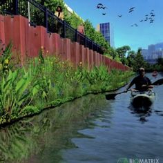 Floating Gardens in the Chicago River Designed to Create Urban Wildlife Sanctuary Arcology, Floating Garden, Chicago River, Garden Architecture, Aquaponics, Photojournalism, Habitats, Wildlife, Urban