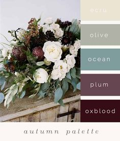 just a little color palette idea to get the ball rolling. Do we have a color palette or a season? Fall Wedding Colors, Wedding Color Schemes, Colour Schemes, Color Combos, Autumn Wedding, Spring Wedding, Plum Wedding, Garden Wedding, October Wedding